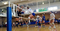 Best Volleyball Shoes for Jumping: A Detailed Review of Top Models